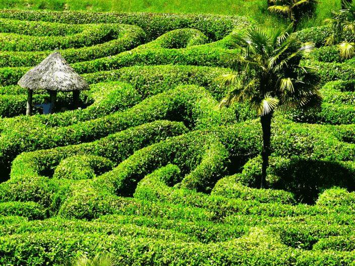 Taman labirin Glendurgan Garden Maze Inggris press