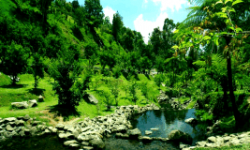 Tempat Outbound di Puncak Bogor bagus menarik indah pemandangan