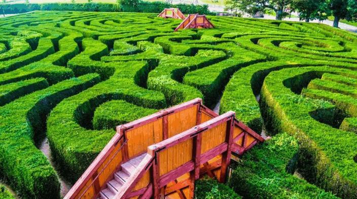 taman labirin Longleat Hedge Maze inggris